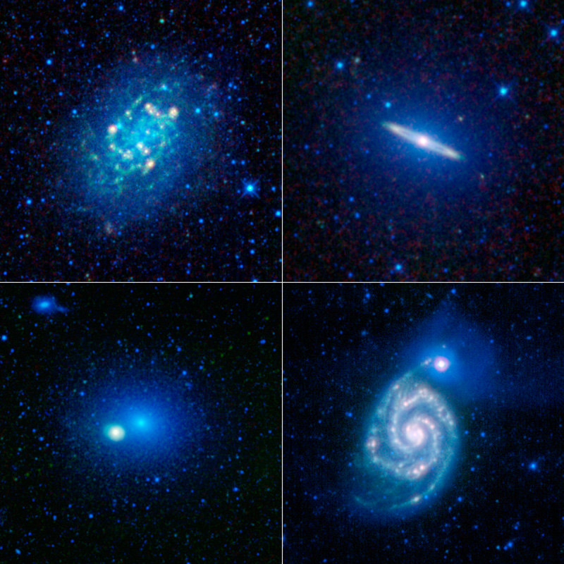 A collage of galaxies is shown to celebrate the one-year anniversary of WISE.